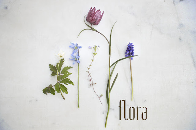 flora, emma klara