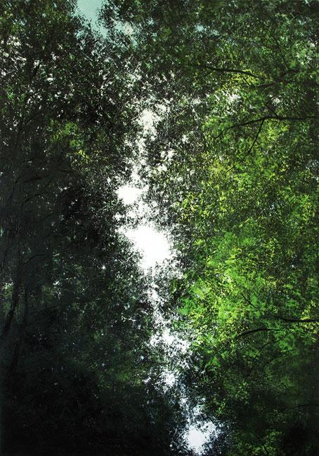 Sur un chemin forestier